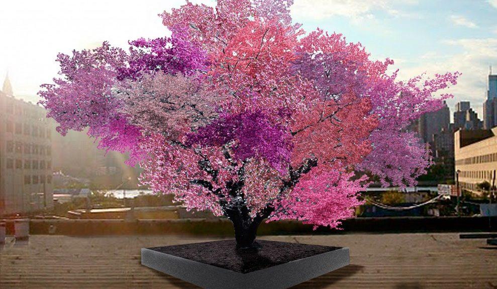 Foto: www.treeof40fruit.com